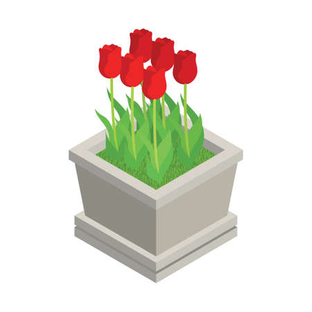 tulips Illustration