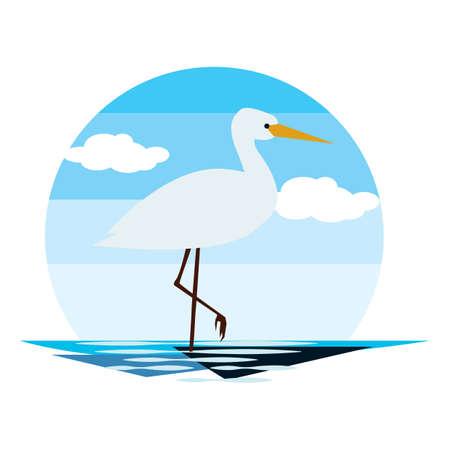 white heron Reklamní fotografie - 79217597