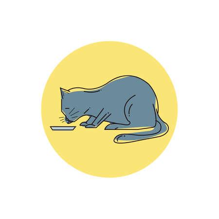 cat eating from food bowl Reklamní fotografie - 79217933