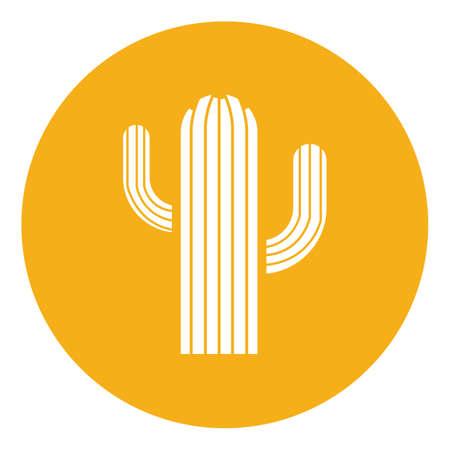 Kaktus Standard-Bild - 79217994