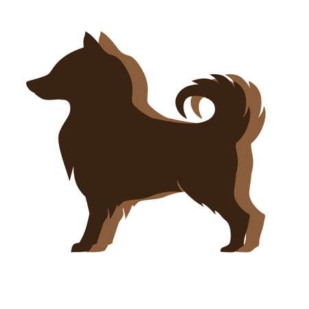 sheepdog: icelandic sheepdog