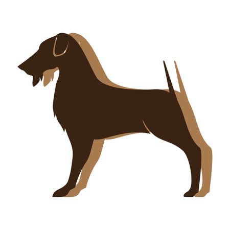 dog Banco de Imagens - 79218574