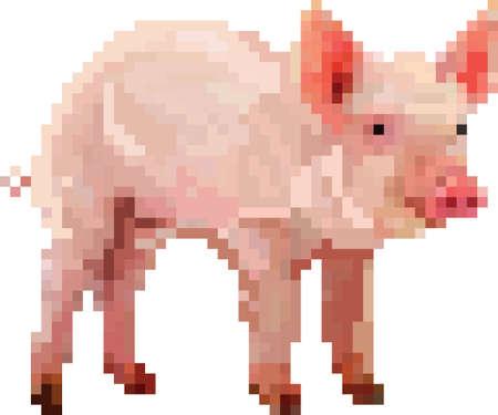 새끼 돼지