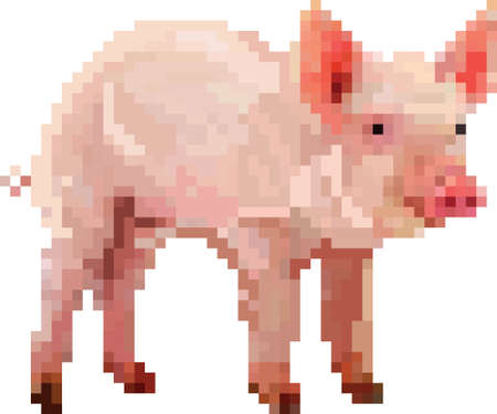 piglet 向量圖像
