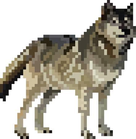wolf Ilustração