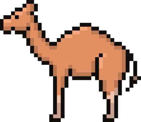camel 向量圖像