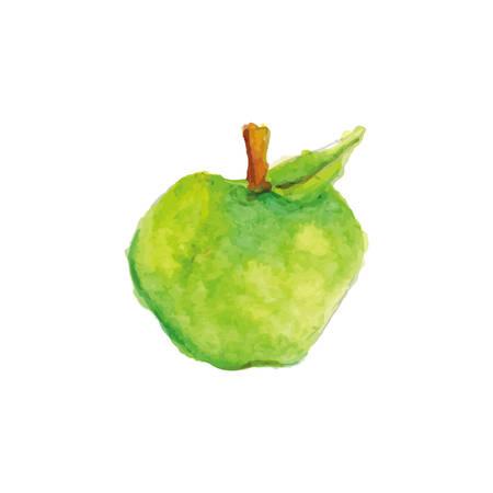 green apple Иллюстрация