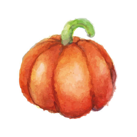 pumpkin Illusztráció