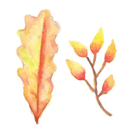 leaves Illusztráció