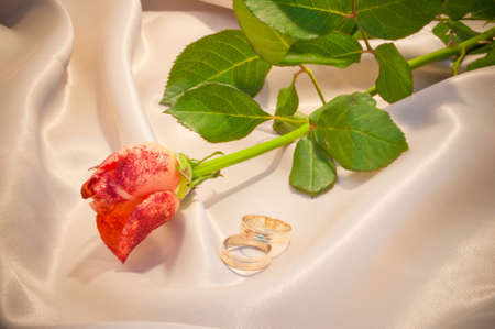 Rose and two wedding rings on the beige satin photo