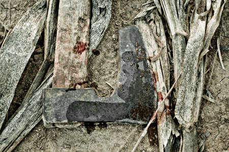 discarded: Discarded bloody axe on the ground with corn stem around