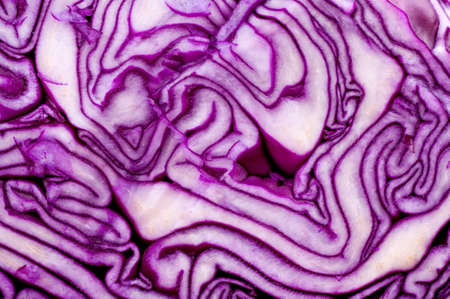 Close-up of red cabbage texture photo