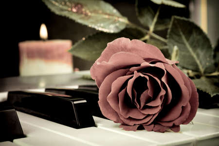 Red rose on the synthesizer keyboard and burning candle in the background photo
