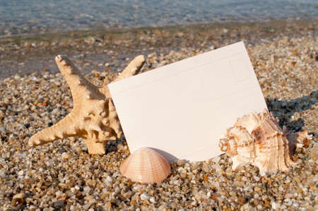 Blank postcard on the sandy beach decorated with starfish and seashells