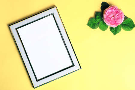 Natural beauty background with white frame and white rose flower. Summer beauty top view background.Ligth background.