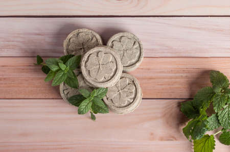 Eco friendly natural solid shampoo and hair conditioner on wooden background. Concept animal fat free, zero waste.