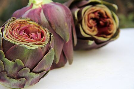 Cut artichokes on white table outdoor photo