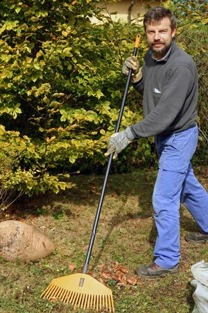 Raking autumn foliage outdoor in the garden photo