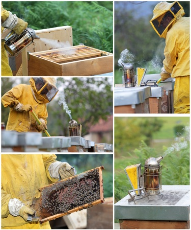 Beekeeper with hives photo