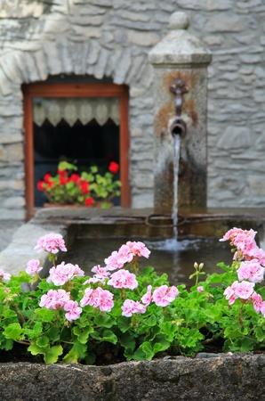 courmayeur: Detalle de la flor rosa y una fuente de piedra en la aldea hermosa de Verrand, cerca de pueblo de monta�a tradicional a Courmayeur y la frontera franc�s italiano.