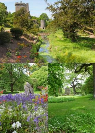 Blarney castle gardens and park collage Ireland