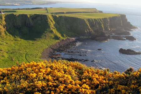 northern ireland: Irish coast and landscape from yellow flowered cliffs. Northern Ireland Stock Photo