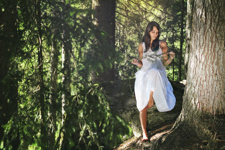 evergreen forest: Beautiful girl in white dress posing in evergreen forest Stock Photo