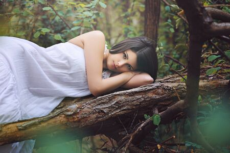 Beautiful woman posing on a dead tree . Soft romantic light