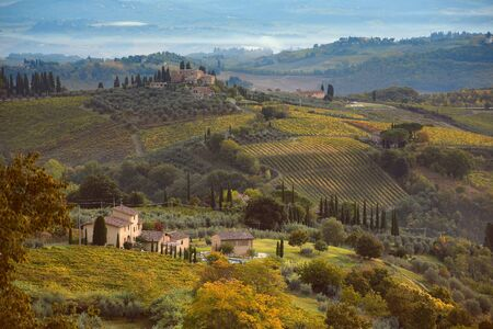agriturismo: Morning fog over Tuscany hills. Italian landscape