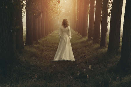 Woman with victorian dress in fairy and dreamy realm. Fantasy manipulation