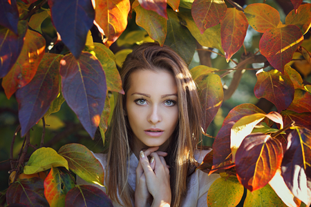 autumn colors: Beautiful girl portrait . Last autumn colors Stock Photo