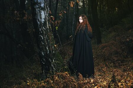 wise woman: Wise woman of the woods . Fantasy and gothic Stock Photo