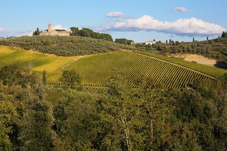 agriturismo: Idyllic landscape of Tuscany . Fields and hills
