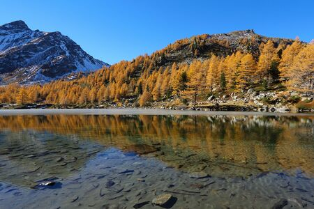 Arpy lake reflection with autumn trees. Alpine mountains