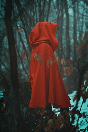 안개가 자욱한 숲에서 신비한 붉은 두건을 쓴 사람 스톡 콘텐츠 - 92525231