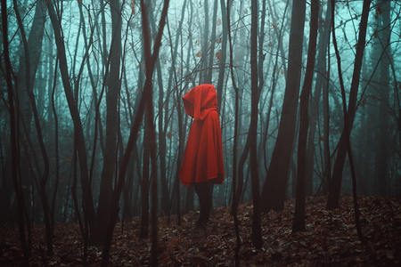 Mysterious figure in dead forest. Misty woods