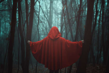 Misty forest and red hooded person