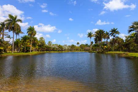 botanic: Pond in Fairchild Tropical Botanic Garden, Florida Stock Photo