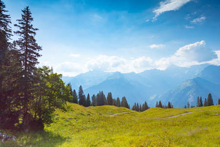 Meadow, trees, mountains and blue sky, Switzerland