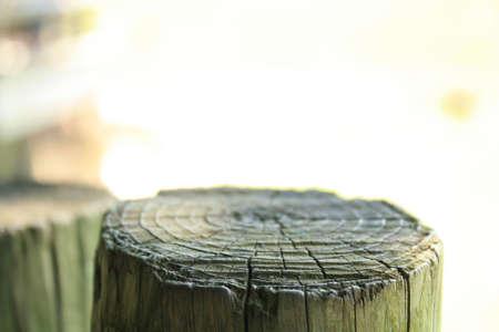 Ripples in wood  Banco de Imagens