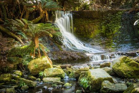 horseshoe falls: Horseshoe falls Tasmania