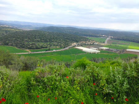 Elah valley overseeing the historical showdown between David and Goliath.
