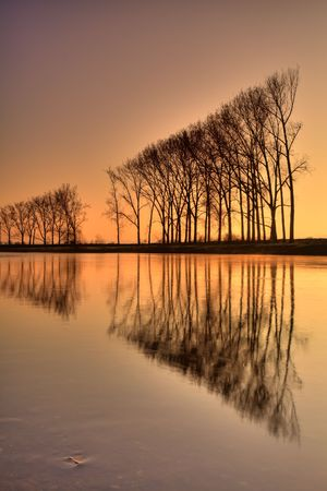 Symmetry on autumn river