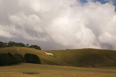 Mystic White Horse near Avebury photo
