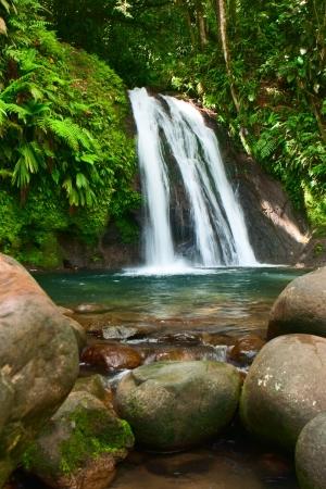 Waterfall on the Guadeloupe island photo