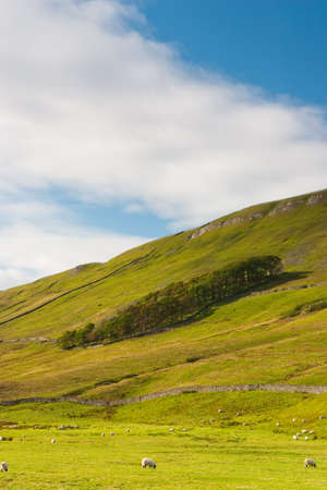 Landscape near Sedbergh in Yorshire Dales National Park Banque d'images