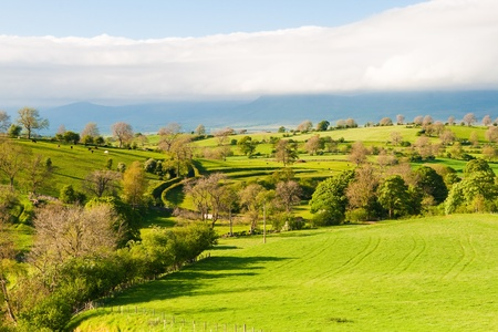 Typical landscape in Yorkshire Dales National Park in Great Britain
