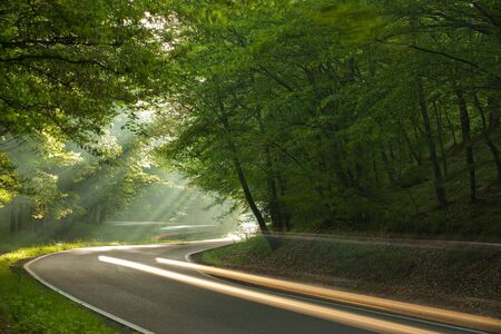 Long exposure on the road in forest in the morning