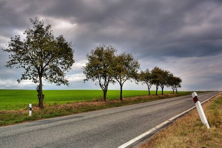 Long asphalt road and autumn trees on sky background Stock Photo