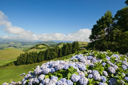 A typical beautiful landscape from the island of Azores in Portugal